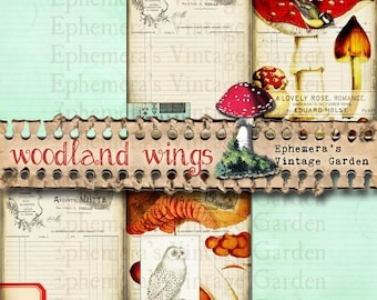 """Woodland Wings - 5x7"""" Journal Page Add-On"""