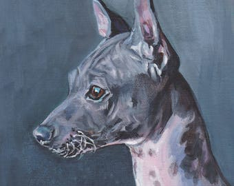 "AMERICAN HAIRLESS Terrier dog portrait art print of LAShepard painting 12x12"" AHT"