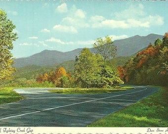 Vintage 1980s Postcard Tennessee Great Smoky Mountains National Park FIghting Creek Gap Fall Leaves Photochrome Era Postally Unused