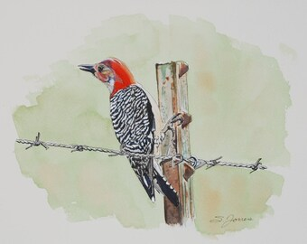Watercolor Woodpecker Print Pen and Wash Wildlife Nature Print