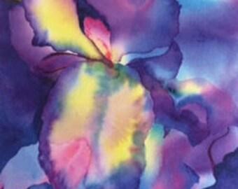Greeting Card - Watercolor Iris