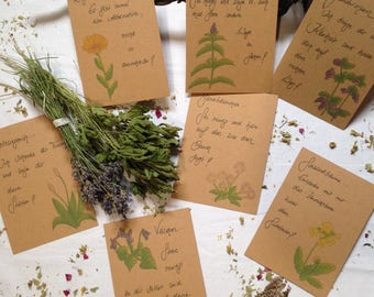 Plant map set with soul messages/postcards/greeting cards/Plant images/herbs/medicinal plants