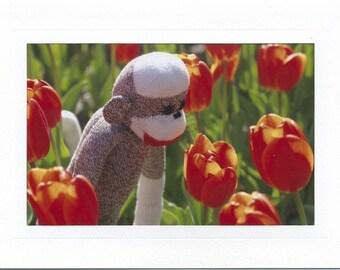 Tiptoeing sock monkey card