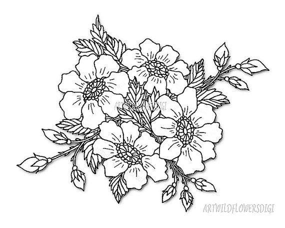 Wild Rose ClipArt Floral Clip Art Digital Stamp Flowers for