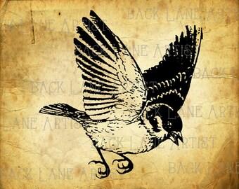 Flying Bird Clipart Illustration Instant Download PNG JPG Digi Line Art Image Drawing L180