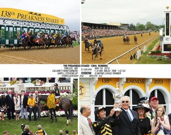 OXBOW  Preakness Stakes 2013 Composite Photo