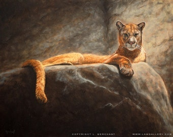 Painting Print Laying Cougar, Print of an Oil Painting by L. Merchant, 11x14 inches