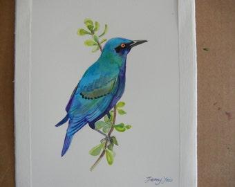 Original Water color painting,blue bird 9x11 in, blue, green, purple,animal
