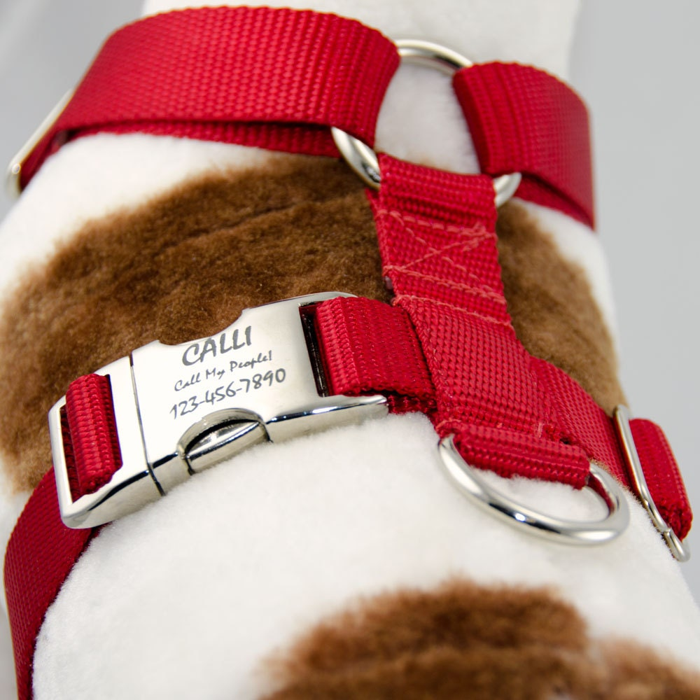 dog id tag for harness automotive wiring diagram