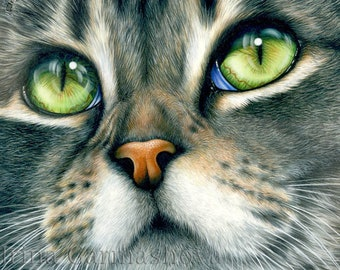 Tabby Cat Print Close Definition by Irina Garmashova