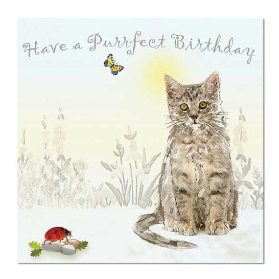 Birthday Orange Cat: Tabby Cat Birthday Card Cute Kitten Have A Purrfect