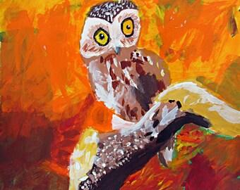 Autumn Owl - Print