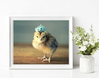 Chicken Photograph Baby Chicken In A Tiny Crown Birds in Hats Print 8x10 Nursery Decor