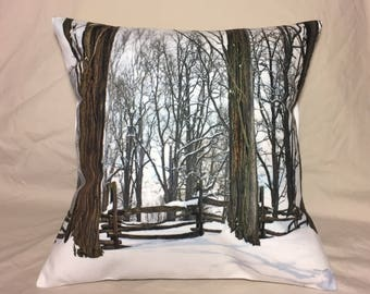 Row Of Country Trees and Fence In Winter Photo Pillow Cover