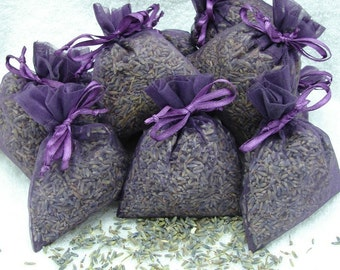 Fragrant Lavender Sachets - Pack of 10