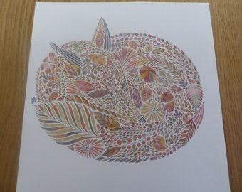 Sleepy Fox coloured by Annie (Millie Marotta)