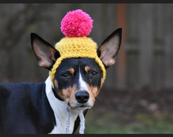 Dog beanie with pom pom / dog hat / crocheted dog hat / dog gift