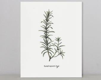 Rosemary | Mis-Printed Art Print