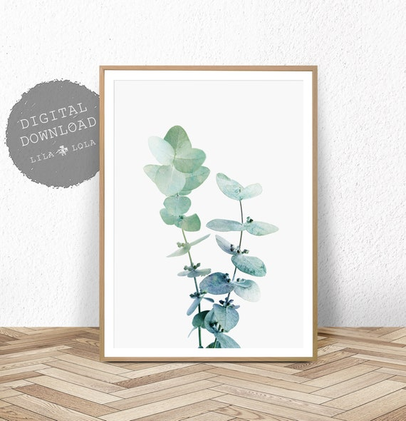 Australian Eucalyptus Leaf Print, Leaf Wall Art, Printable Poster, Plant Photography, Modern Botanical Plant Print, Digital Download