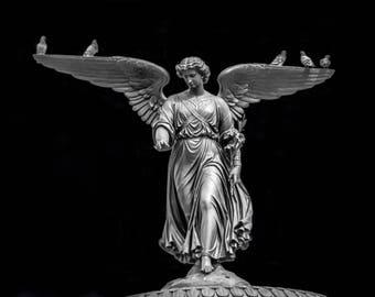 Fine Art Photography, Central Park Print, New York City Wall Art, NYC Print, Angel Wings, Home Decor, 11 x 14 Print, Black, Silver