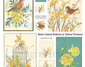 RETRO 1970S BIRDS digital collage sheet, Robins Birdcage Yellow Flowers, Mid-Century greeting cards Vintage Art printables ephemera DOWNLOAD