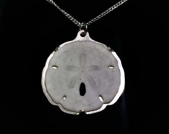 Actual Sand Dollar Necklace - Beach Jewelry / Beach Wedding / Sea Life Jewelry / Nautical Jewelry / Gift for Mom / Gift for Her / Dainty