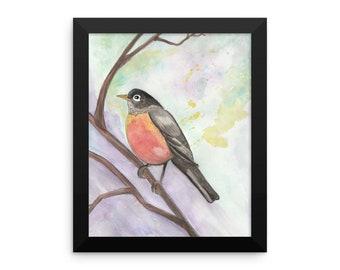 Spring Robin Watercolour Framed poster
