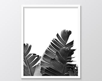 Tropical Leaf Print, Tropical Printable Wall Art, Black and White Banana Palm Print, Instant Download, Tropical Wall Art