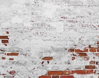 Old Distressed Brick Wall Photo Backdrop, Boys Newborns Photography Background for Photoshoots, Peeling Brick wall photo drop XT-5683