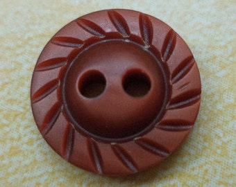 10 small brown buttons 13mm (6557) button