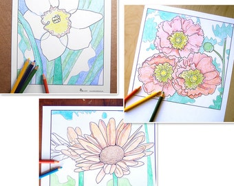 spring flowers coloring pages, flower coloring book, adult coloring sheet, flower art, printable coloring page