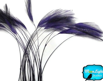 Stripped Feathers, 1 Dozen - PURPLE Stripped Rooster Hackle Feather: 398