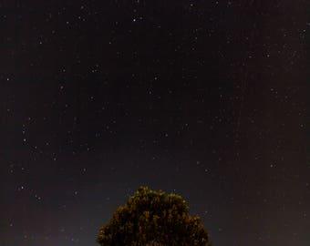 Night Stars Instant Download