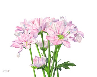 Daisies print of watercolor painting. A3 size. D12816. Daisy watercolor painting, daisy print, daisy painting. botanical art, wall art print