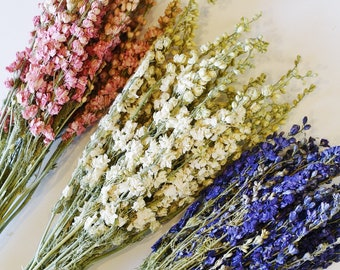 Dried Larkspur, White, Cream, Pink, Dark Blue, Deep Purple, Dry Flowers, Bunch of Floral, Bouquet, Wedding, Home Decor, Bundle, Preserved