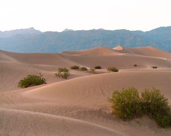 Sand Dunes of Death Valley, Desert Landscape Photography, Fine Art Print