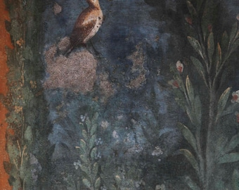 Pompeii-Naples Italy-photo of particular fresco-bird in the leaves-digital photography colors. Photographic printing.