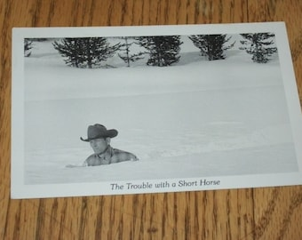 Unused Vintage Postcard-- The Trouble with a Short Horse-- Duckboy Cards