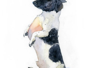 Dachshund in a Bowler Hat - Matted Archival Print