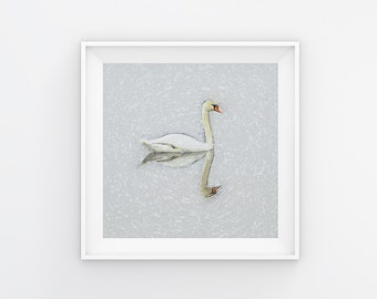 Swan Print, Swan Printable, Swan Wall Art, Swan Wall Decor, Swan Home Decor, Swan Painting, White Swan, INSTANT DOWNLOAD, 12x12, 8x8