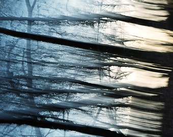 """Rustic image in blue shades with black from the series """"Nature Graphics"""": Original signed fine art photography print 6x6 inches (15x15 cm)"""