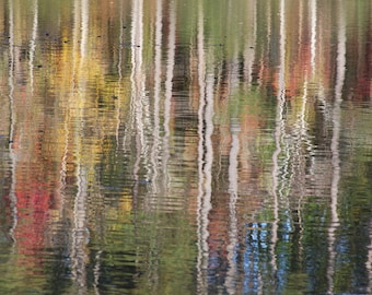 Lakeside Reflection, Trees Reflected in Water, Abstract Art, Peaceful Photograph,  Forest Reflection, White Trees, Water Ripples, Fine Art