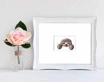 ORIGINAL Art Pocket Sloth ACEO Matted Drawing