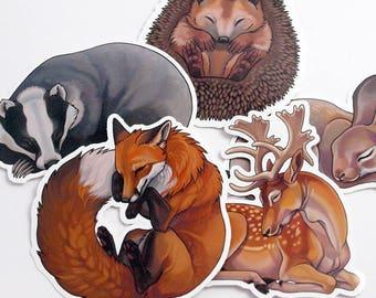 Sleepy woodland sticker pack - 5 vinyl animal stickers