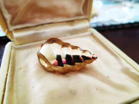 Vintage goldtone Conch sea shell scarf clip