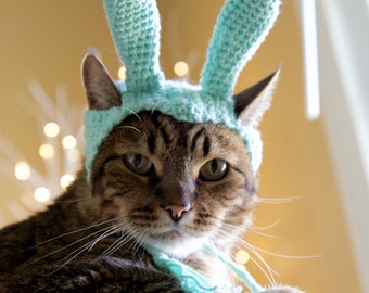 Crochet Bunny Hat for Cats, Fun Rabbit Pet Costume, Cat Accessories, Mint Colored, Unique Gift for Pets