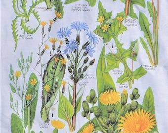 Botanical tea towel – Dandelion