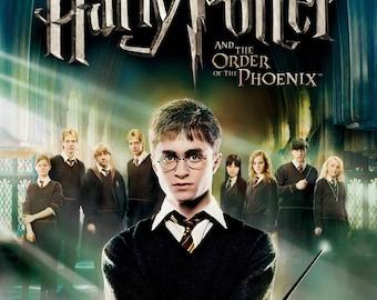 Harry Potter Framed 11 x 17 Print Poster