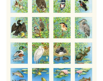 Bird & Fish Fabric, Ecosystem Fabric, Freshwater Life by Tracie Lizotte for Elizabeth Studio 4328 - Priced by the 24-Inch Panel