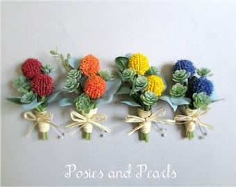 "Craspedia Boutonnieres, Billy Buttons in Yellow, Orange, Red, or Blue, Green Succulent Groom's Boutonniere, Groomsmen, ""Constant"""